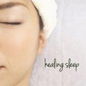 Healing Sleep by Various Artists