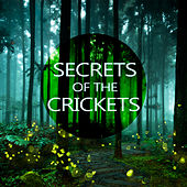 Secrets of the Crickets by Various Artists