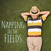 Napping in the Fields by Various Artists
