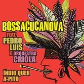 Índio Quer a-Pito de BossaCucaNova
