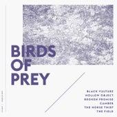 Birds of Prey by BIRDS OF PREY