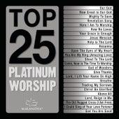 Top 25 Platinum Worship by Various Artists