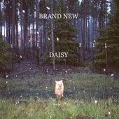 Daisy von Brand New