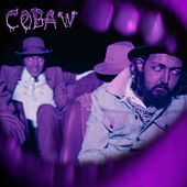 Cobaw / Fool's Gold de The Cactus Channel