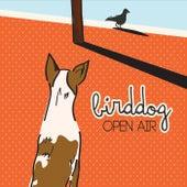 Open Air by Birddog