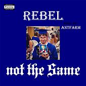 Not the Same de Rebel