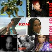 Divas Of House III - EP de Various Artists