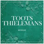 Michigan von Toots Thielemans