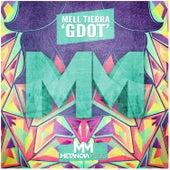 Gdot by Mell Tierra