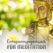 Entspannungsmusik für Meditation - Musik zum Ausklang, Mentales Training, Autogenes Training, Transzendentale Meditation und Yoga, Naturgeräusche, Musiktherapie, Gesunder Schlaf by Various Artists
