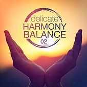 Delicate Harmony Balance, Vol. 2 de Various Artists