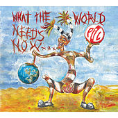 What The World Needs Now... von Public Image Ltd.