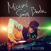 Miami Spring Break - The Ultimate House Selection by Various Artists