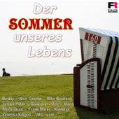Der Sommer unseres Lebens von Various Artists