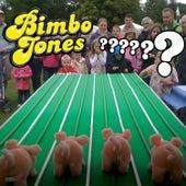Questions? by Bimbo Jones