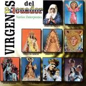 Virgenes del Ecuador by Various Artists
