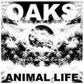 Animal Life de Oaks