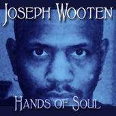 Hands of Soul by Joseph Wooten