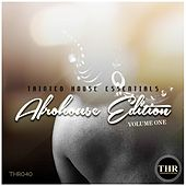 Tainted House Essentials: Afro House Edition, Vol. 1 by Various Artists