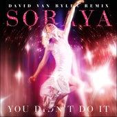 You Didn't Do It (David Van Bylen Day Remix) by Soraya