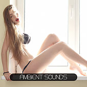 Ambient Sounds by Various Artists