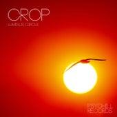 Luminus Circle by Crop