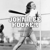Shake It Baby de John Lee Hooker