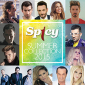 Spicy Summer Collection 2015 von Various Artists