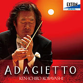 Adagietto by Various Artists