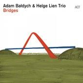 Bridges by Adam Baldych (1)