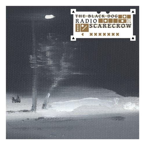 Radio Scarecrow by The Black Dog