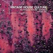 Vintage House Culture, Vol. 2 - Nu Disco House Sounds by Various Artists