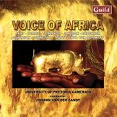 Voices of Africa de Various Artists