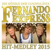 Hit-Medley 2015 by Fernando Express