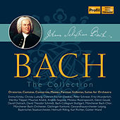 Johann Sebastian Bach: The Collection by Various Artists