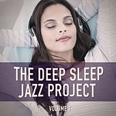 The Deep Sleep Jazz Project, Vol. 1 (Relaxing Jazz for Peaceful Nights) von Various Artists
