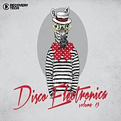 Disco Electronica ,Vol. 13 by Various Artists