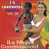 14 Cañonazos Bailables, Vol. 38 de Various Artists