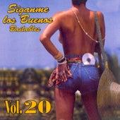 Síganme los Buenos, Vol. 20 de Various Artists