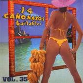 14 Cañonazos Bailables, Vol. 35 de Various Artists