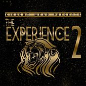 Experience 2 by Various Artists