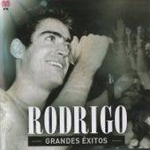 Grandes Exitos by Rodrigo Bueno