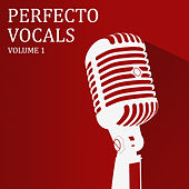 Perfecto Vocals, Vol. 1 von Various Artists