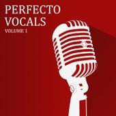 Perfecto Vocals, Vol. 1 de Various Artists