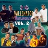 14 Vallenatos Románticos, Vol. 2 de Various Artists