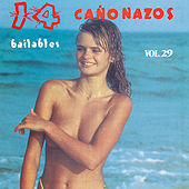 14 Cañonazos Bailables, Vol. 29 de Various Artists