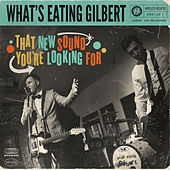 That New Sound You're Looking For by What's Eating Gilbert
