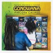 Pincoya Calipso - Pasado, Presente, y Futuro von Gondwana