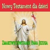 Nowy Testament Dla Dzieci Zmartwychwstanie Pana Jezusa by Various Artists