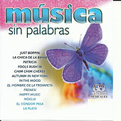 Musica Sin Palabras by Various Artists